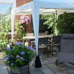 Patio Garden with Canopy