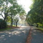 Nearby Kelvingrove Park